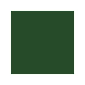 Dose mit allgaier-grüner Farbe LM 6111