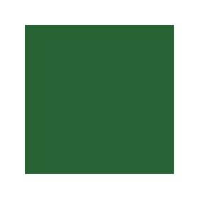 Dose mit laubgrüner Farbe für Porsche RAL 6002