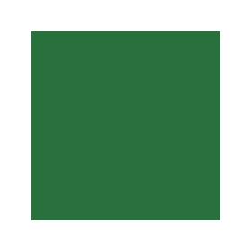 Spraydose mit grüner Farbe RAL 6001
