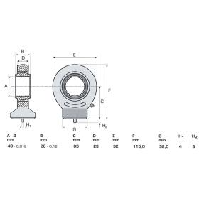 Gelenkkopf GE40 mit Nachschmierung - Ø40mm
